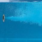 Whirlpool 4 jets con regolazione portata e sistema di chiusura